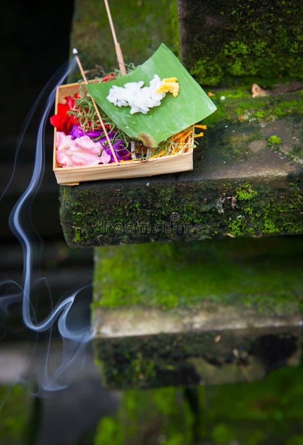 Scatola con le offerti tradizionali di mattina di balinese o i sari di Canang, Ubud, Bali fotografia stock