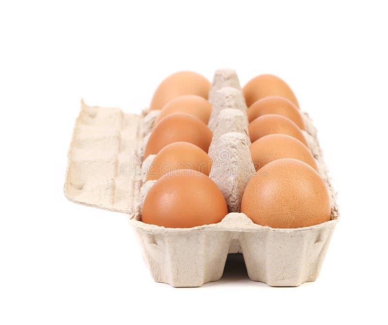 Scatola delle uova del cartone con dieci uova marroni immagine stock libera da diritti
