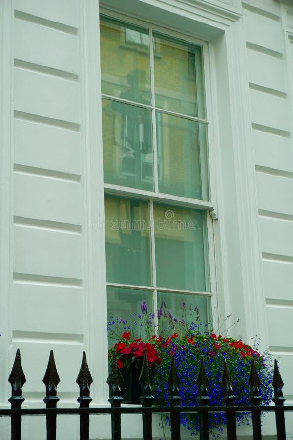 Scatola di finestra di fiori rossi e blu fotografia stock