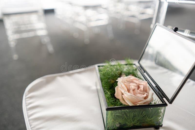 Scatola di vetro con la rosa e la pianta rosa per le fedi nuziali Fondo vago con nozze Decorazione di evento con fresco immagine stock libera da diritti