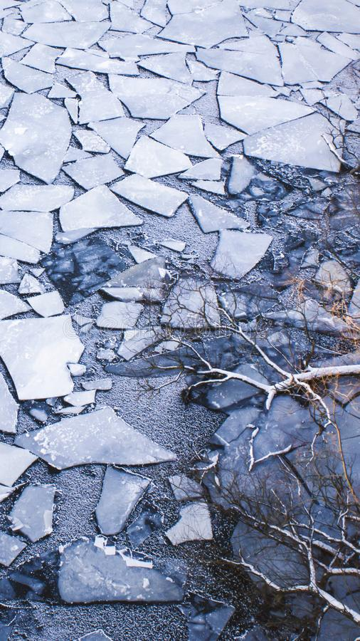 Scatter of crushed ice floes. Bare tree branches reaching out. Scatter of crushed ice floes. Bare tree branches reaching out over the frozen water stock image