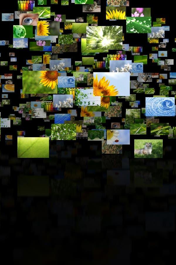 Scattered images vector illustration