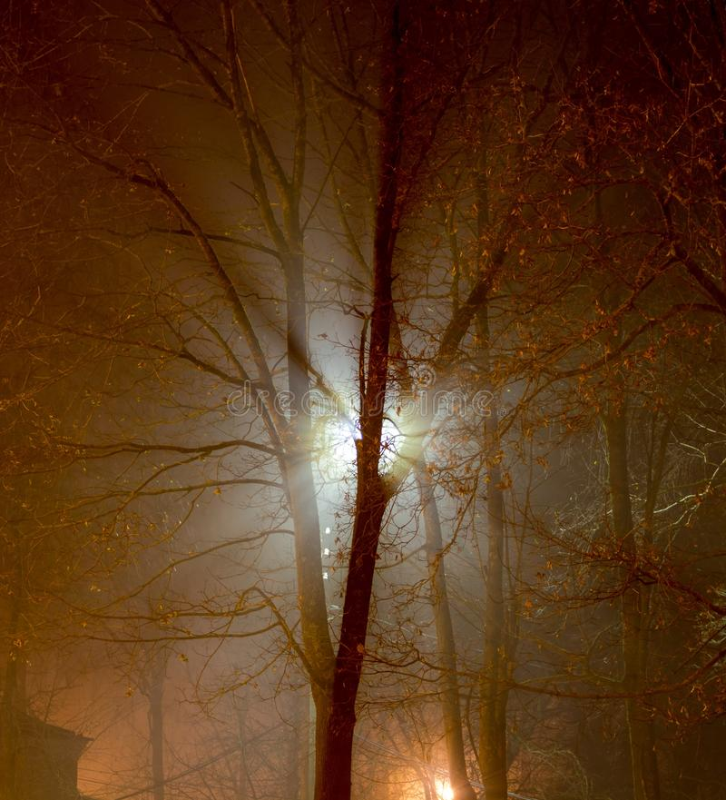 Scattered light from a street lamp at night during a thick fog stock photo