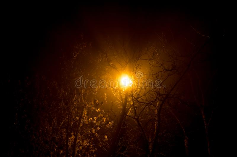 Scattered light from a street lamp at night during a thick fog stock photos