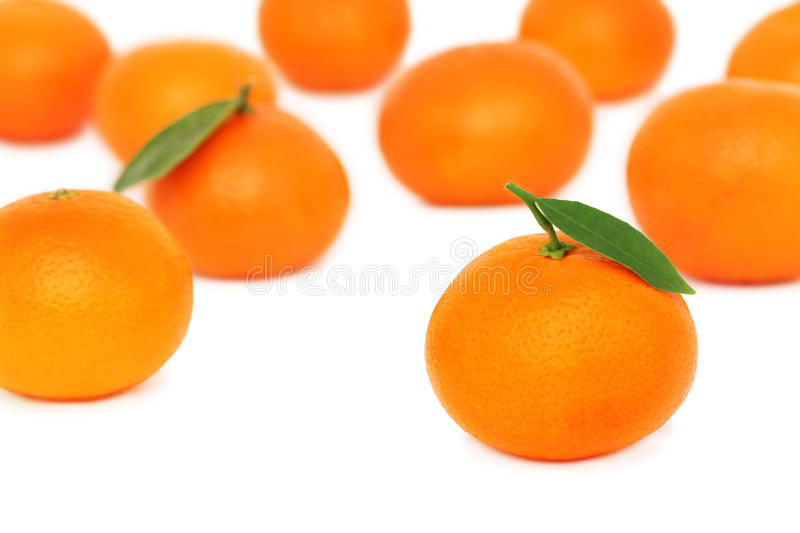 Scattered ripe mandarins on white background stock photography