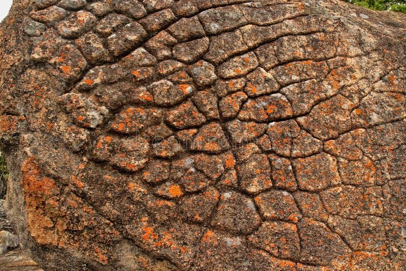 Scattered rock erosion, Matopos National Park, Zimbabwe stock photography