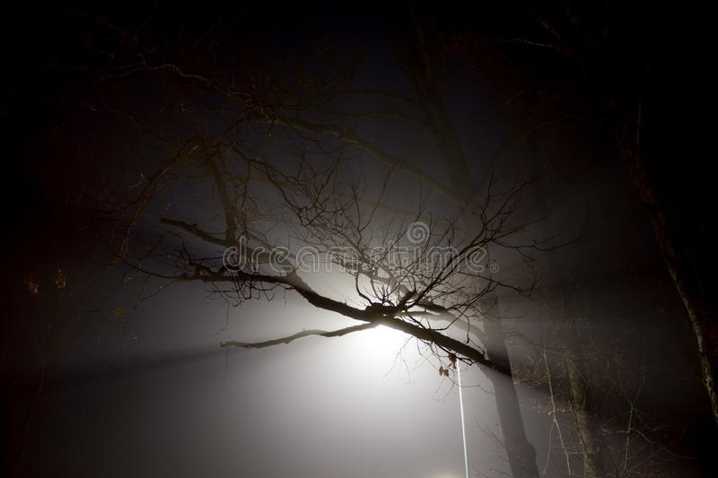 Scattered white street light at night royalty free stock photos