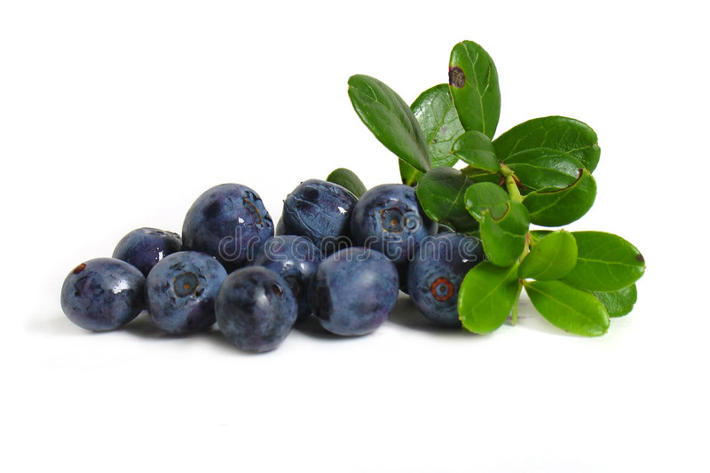 Scattering of bilberries. On white background stock photo