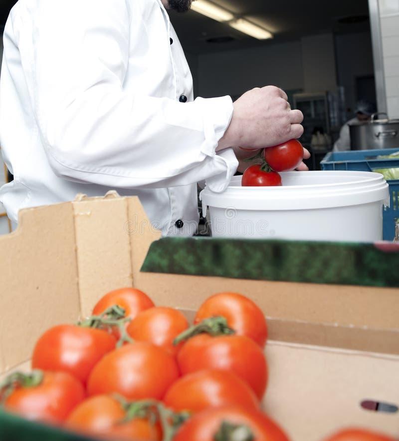 Scelga i pomodori fotografia stock libera da diritti