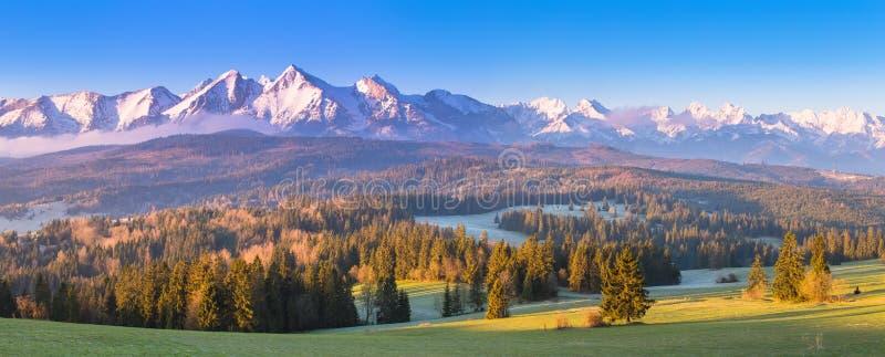 Scena alpina di estate immagini stock libere da diritti