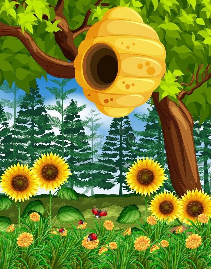 Scena con l'alveare sull'albero illustrazione di stock