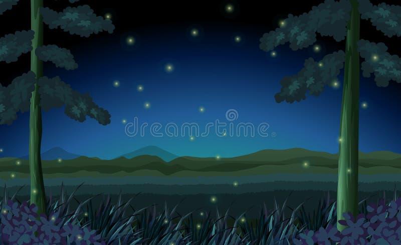 Scena con le lucciole in foresta alla notte illustrazione di stock