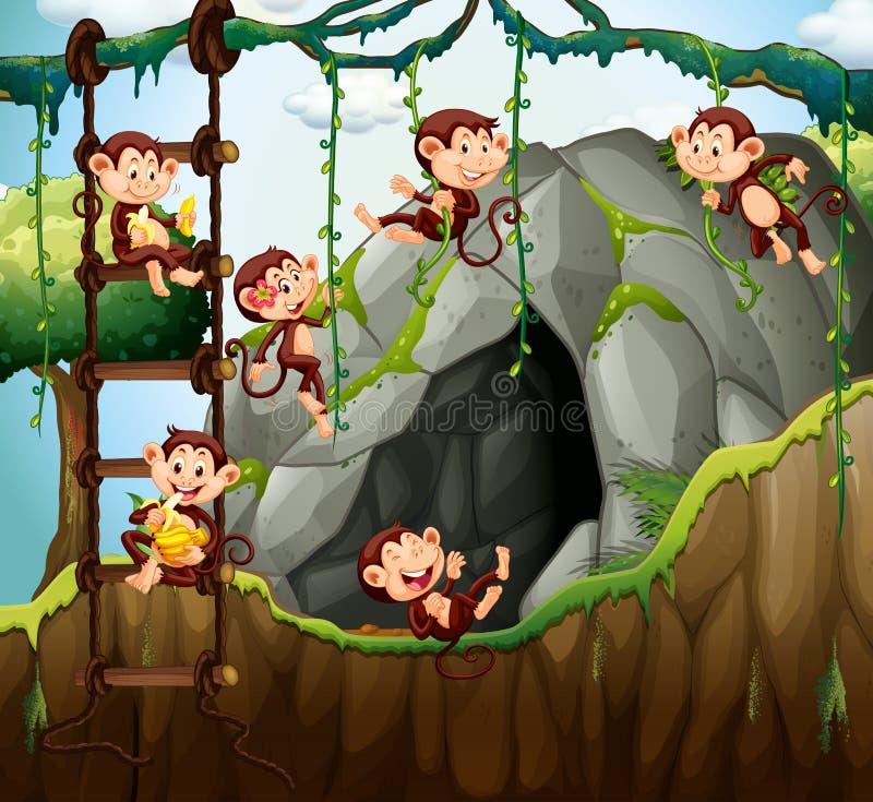 Scena con le scimmie che giocano nella caverna royalty illustrazione gratis