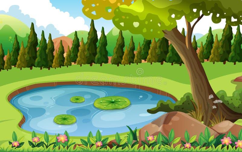 Scena con lo stagno nel campo illustrazione vettoriale