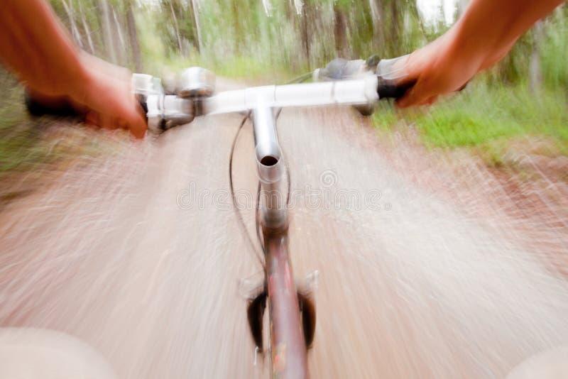 Scena confusa della traccia della foresta di giro veloce del mountain bike immagini stock