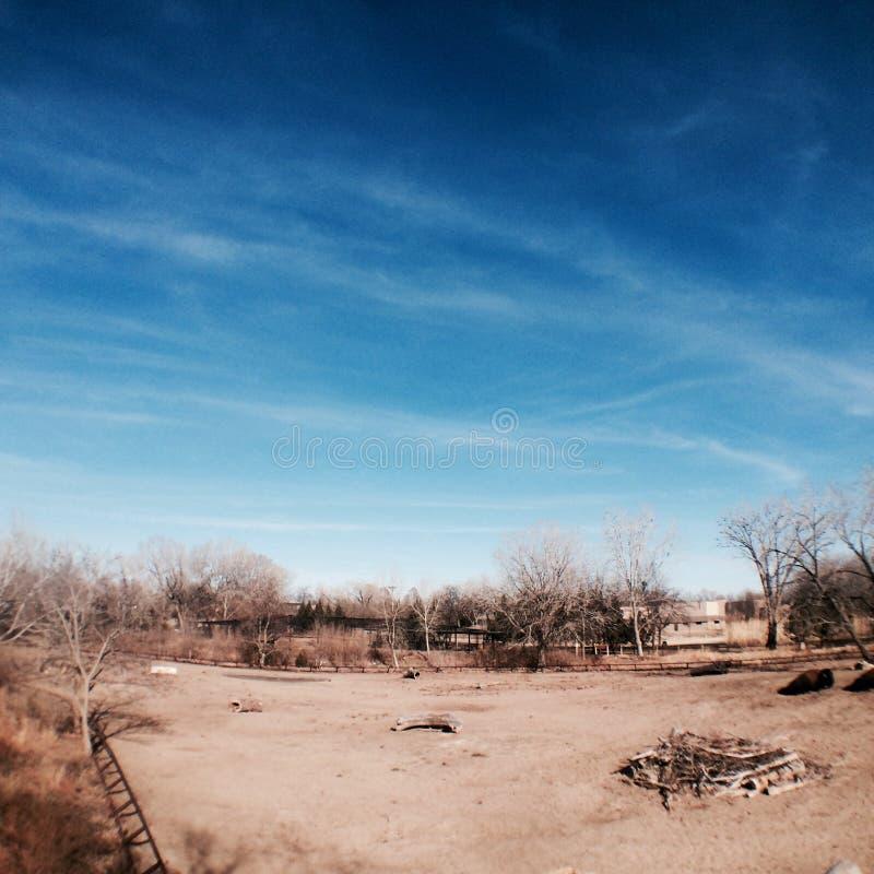 Scena del cielo blu fotografia stock libera da diritti