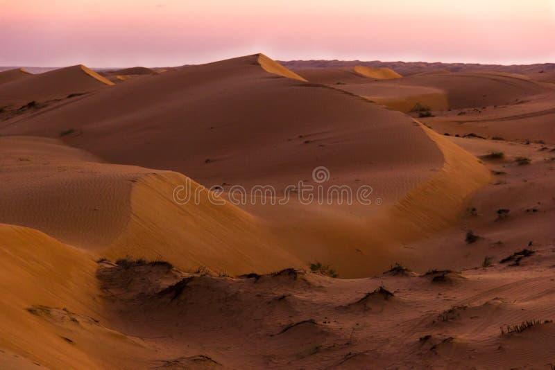 Scena del deserto di tramonto Cielo di Rosa in deserto Cielo di tramonto nelle sabbie fotografie stock libere da diritti