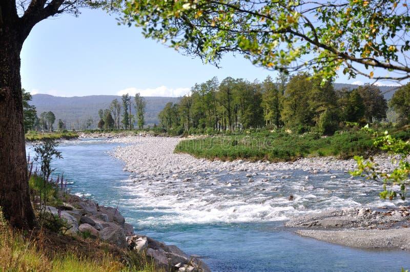 Download Scena del fiume di Haupiri fotografia stock. Immagine di acqua - 30829726