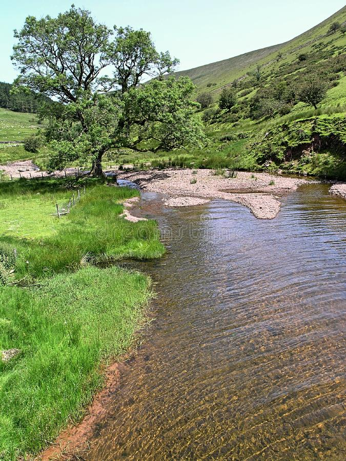 Scena 2 del fiume del terreno boscoso di Lingua gallese fotografia stock libera da diritti