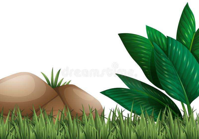 Scena del giardino con erba e roccia illustrazione vettoriale