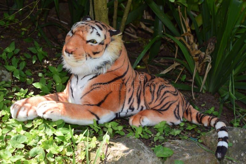 Scena del giardino del tiro della tigre della peluche fotografie stock