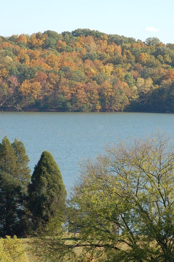 Scena del lago immagine stock