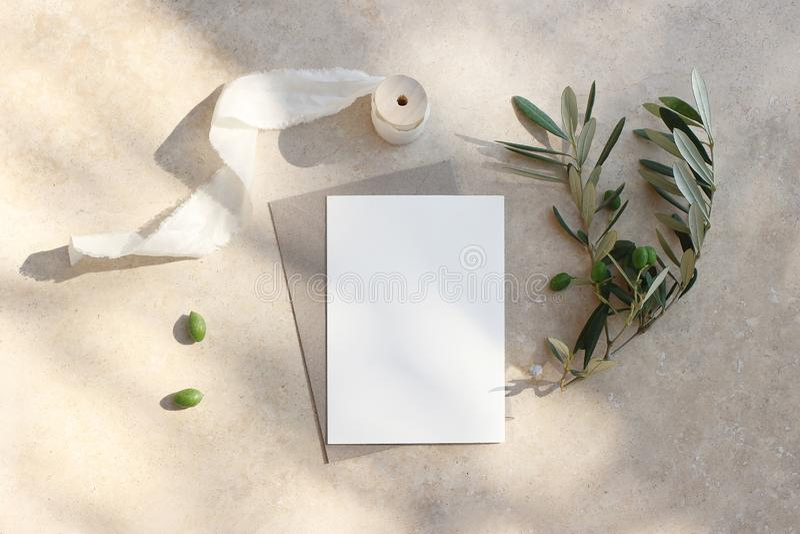Scena del modello della cancelleria di nozze di estate Cartolina d'auguri in bianco, invito Busta del mestiere, frutta verde oliv fotografia stock