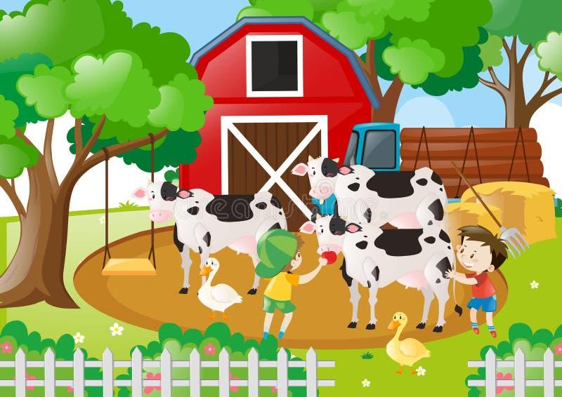 Scena dell'azienda agricola con i ragazzi che alimentano le mucche illustrazione vettoriale