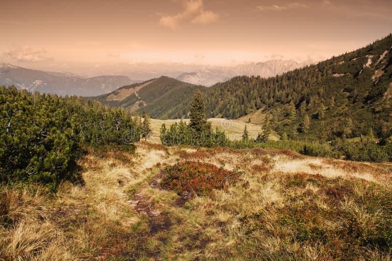Scena della montagna immagini stock
