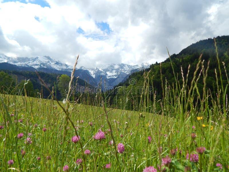 Scena della montagna in Garmisch, Germania fotografia stock libera da diritti