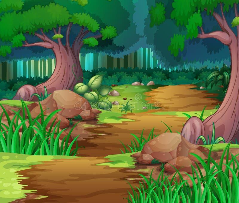 Scena della natura con l'escursione della pista nel legno illustrazione di stock