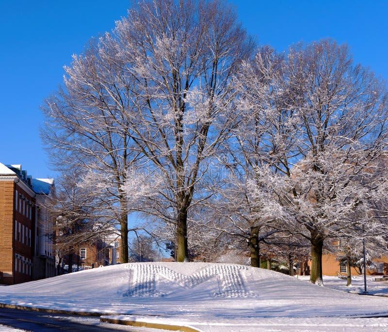 Scena della neve dell'università del Maryland fotografia stock libera da diritti