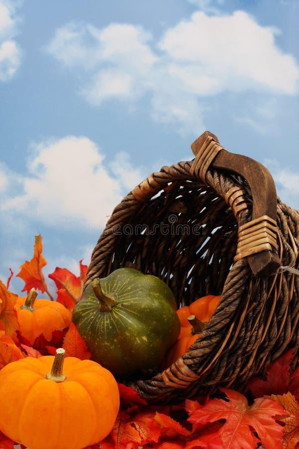 Scena della raccolta di autunno fotografia stock libera da diritti
