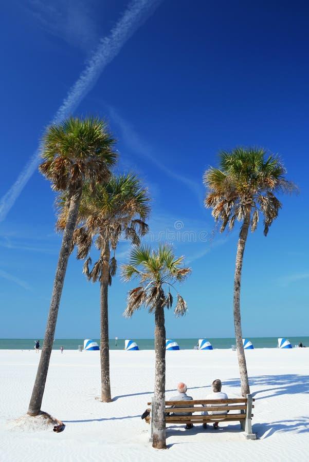Scena della spiaggia con le palme fotografie stock libere da diritti