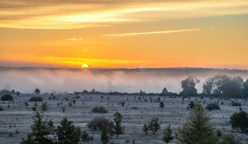 Scena di alba con foschia e la brina immagini stock libere da diritti