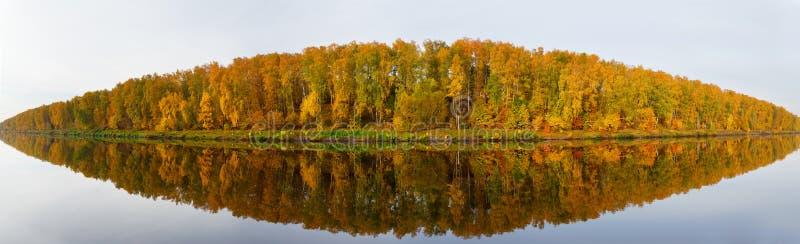 Scena di autunno Alberi di caduta con la riflessione in un lago immagine stock