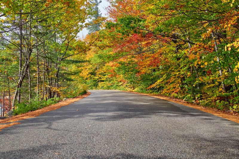 Scena di autunno con la strada immagine stock
