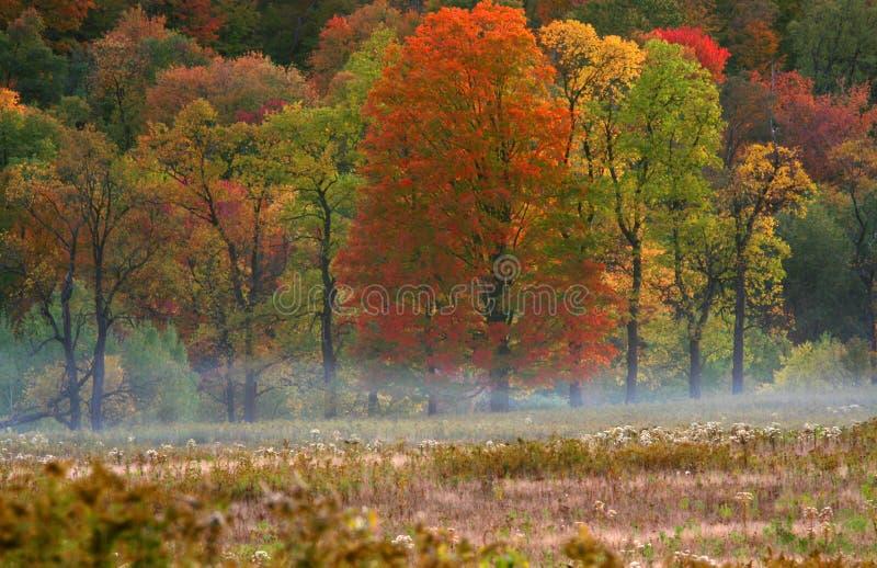Scena di autunno dall'itinerario 6 immagini stock libere da diritti