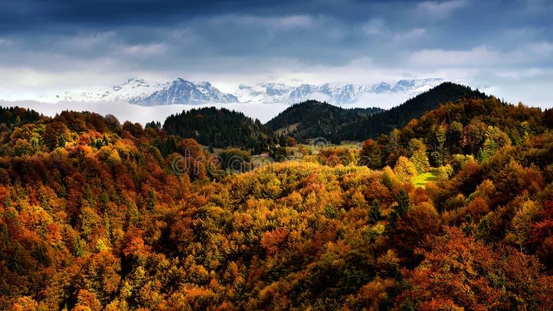 Scena di autunno e di inverno in Romania, bello paesaggio delle montagne carpatiche selvagge fotografia stock libera da diritti