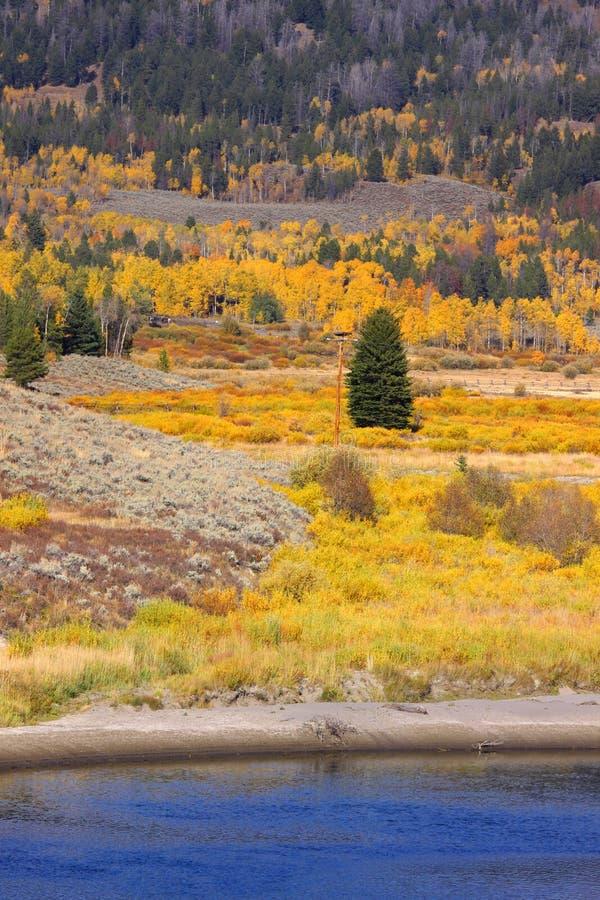 Scena di autunno nel Wyoming immagine stock