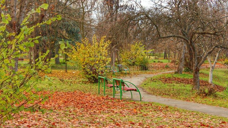 Scena di autunno sul parco della città fotografia stock