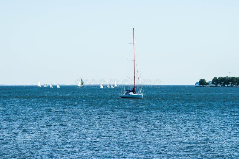 Scena di estate di piccole barche a vela sulla baia di Chesapeake fotografia stock