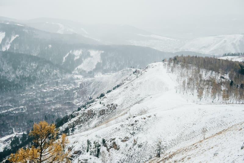 Scena di inverno con neve in parco nazionale in Russia, Siberia immagine stock