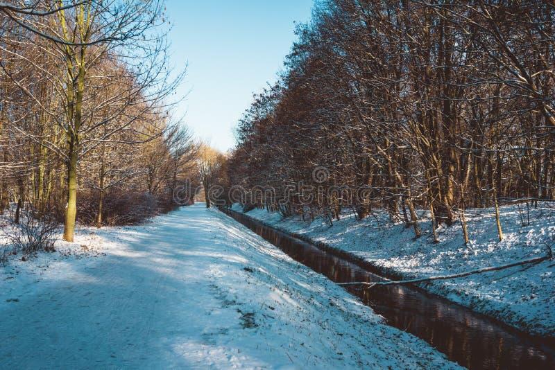 Scena di inverno di un canale che passa terreno boscoso fotografia stock libera da diritti