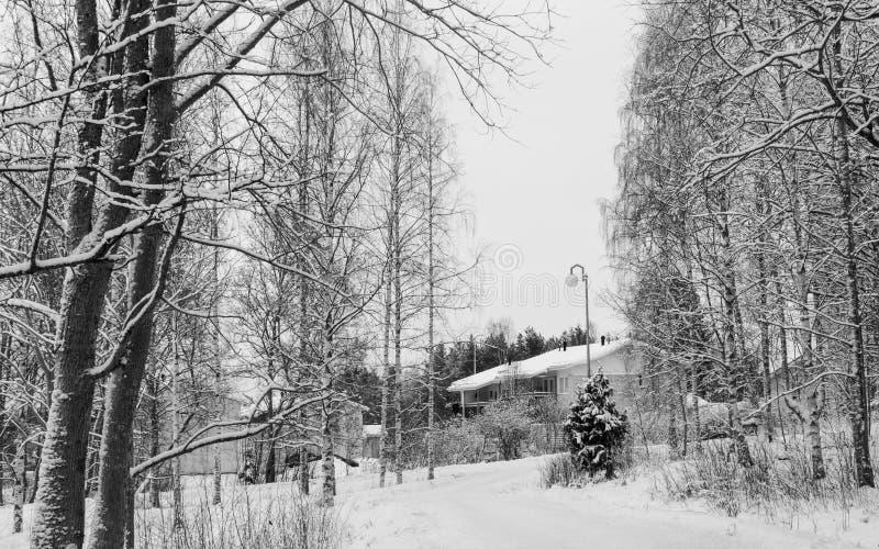 Scena di inverno in Finlandia immagine stock libera da diritti