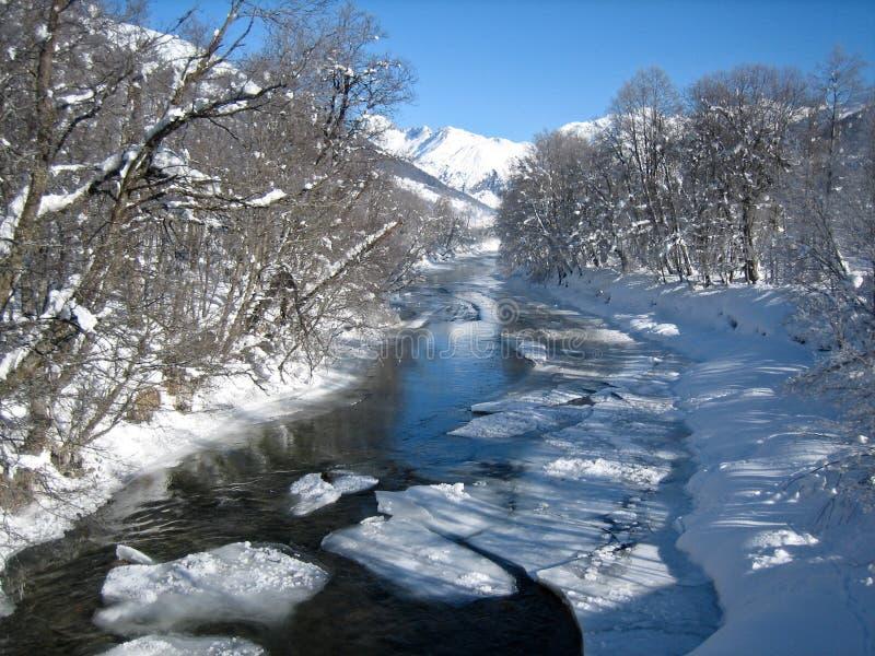Scena di inverno in Svizzera fotografia stock libera da diritti