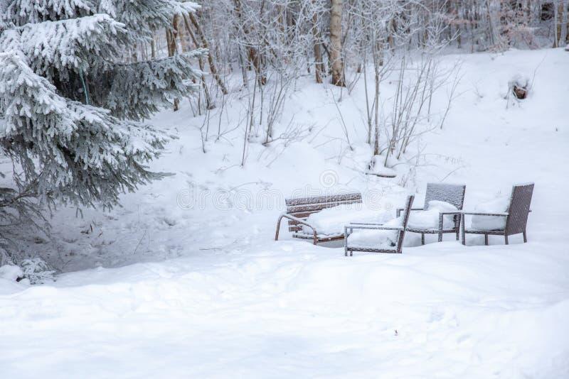 Scena di inverno in una zona di resto vicino ai banchi di una foresta ed ai pupazzi di neve, sentiero forestale immagini stock libere da diritti