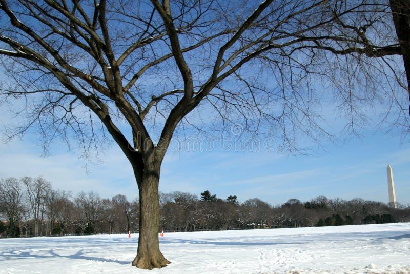Scena di inverno a Washington D C immagini stock libere da diritti