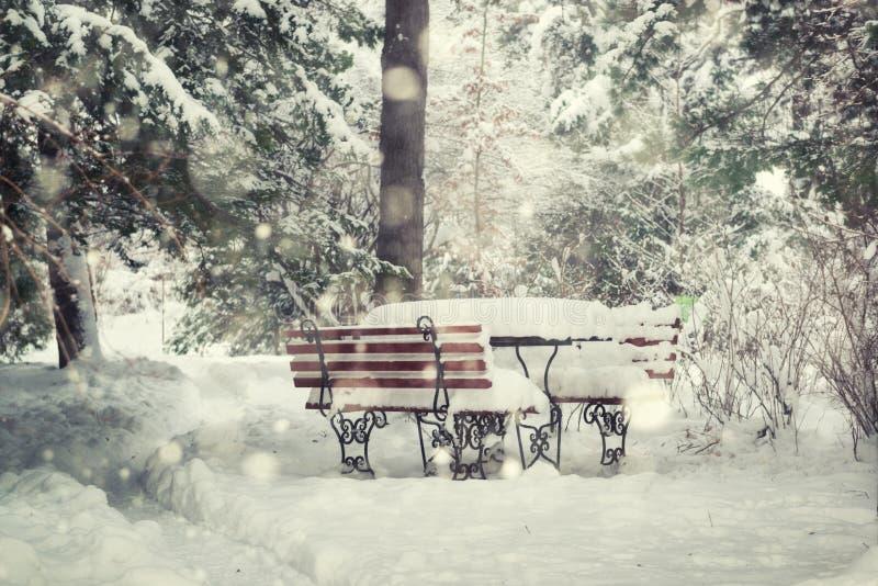 Scena di Natale in un parco fotografie stock libere da diritti