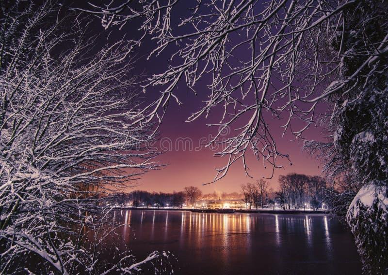 Scena di notte di inverno fotografia stock